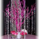 Hot Pink Manzanita Tree with Beaded Garland Accents Wedding Centerpiece