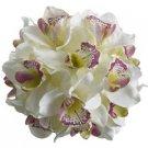 "9"" Artificial Cymbidium Orchid Pomander Kissing Ball in Cream and Fuchsia"