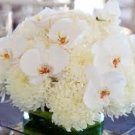 12 Spider Dahlias & Orchids Wedding Reception Table Centerpieces - Custom Made To Order