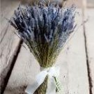 Fragrant Lavender Budle With Shear Ribbon Naturally Dried - Perfect For A Unique Bridal Bouquet