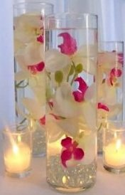 36 Orchids Glass Cylinder Vase Wedding Reception Table