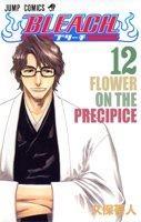 Bleach Vol. 12 [Japanese Edition]