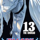 Bleach Vol. 13 [Japanese Edition]