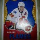 2010-11 O-Pee-Chee Retro Robyn Regehr card #94