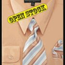 Men'S Basic Shirt With Matching Tie And Hanky