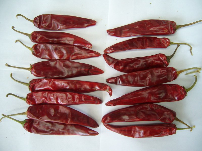 Chile Puya, Dried, 2 Oz