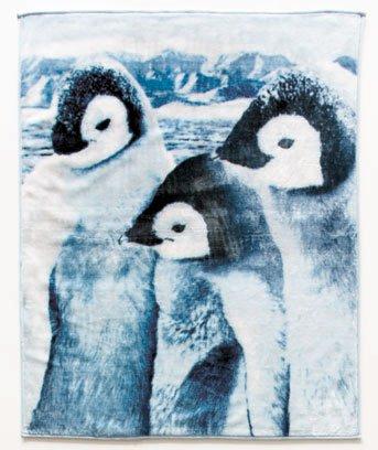 New Plush Animal Lovers' Black and White Penguins Polyester Throw Blanket