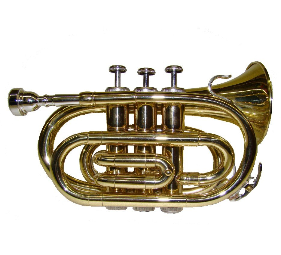 WD480 B Flat Gold Pocket Trumpet with Case
