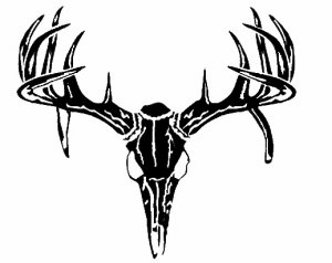 BUCK SKULL DEER TROPHY HUNTING    VINYL DECALS STICKERS