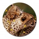 Cheetahs Round Mouse Pad