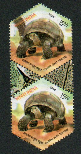INDIA Aldabra Giant Tortoise 15.00p pair with selvage; Scott #2250 Issued 2008