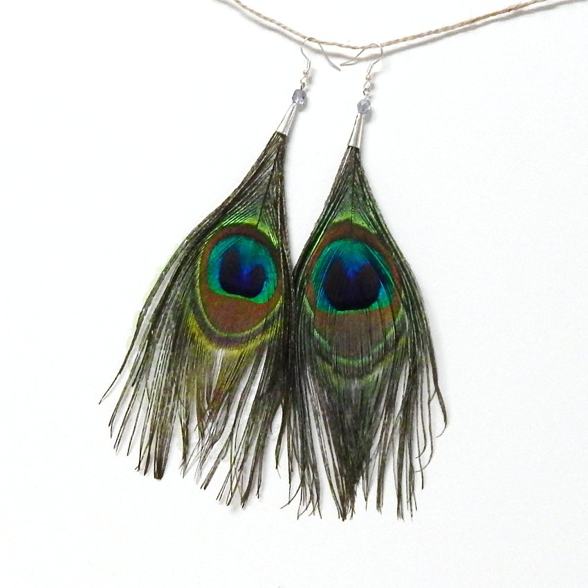 Super Long Natural Peacock Feather Earrings 8 inch
