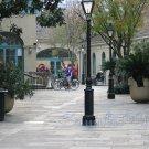 NO 11, 5x7 Print - Fine Art Image Photo Digital, new orleans bourbon st architecture tree courtyard