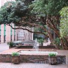 NO 22, 5x7 Print - Fine Art Image Photo Digital, new orleans bourbon st architecture tree courtyard