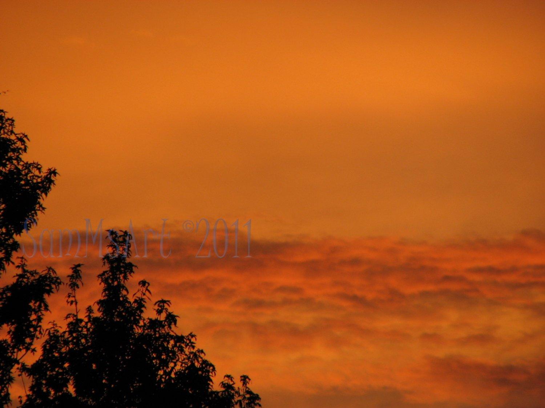 August 12 - 8x10 Print, Digital Fine Art Image Photo - Sunset, summer, fall, Power lines, Clouds