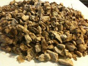 ORGANIC ACORUS CALAMUS ROOT Sweet Flag herb 1 oz.