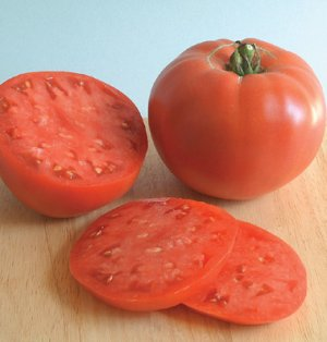 ORGANIC Rose Tomato 80 Seeds HEIRLOOM Tomato
