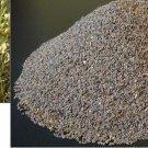 14 g. SYRIAN RUE Harmal viable Seeds / Peganum Harmala