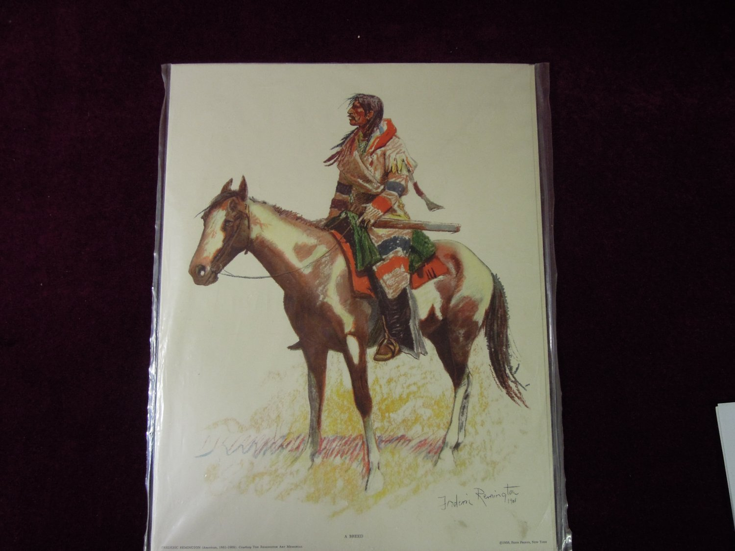 Frederick Remington A Breed 1956 Print Bunch Of Buckskins