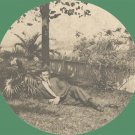 Vintage Photo CABINET CARD Man Reclining under Palm