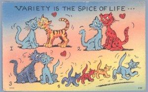 Vintage Postcard CAT Kitten VARIETY IS SPICE OF LIFE