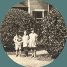 Vintage Photo 1920s/1930s Children Pose by Bush TOPIARY