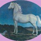 Vintage POSTCARD White Stallion K516 VERN PARKER Horse