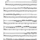 Pachelbel: Canon and Gigue for Three Violins and Basso Continuo in D Major