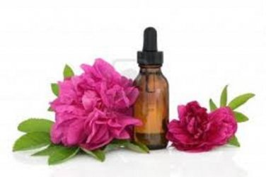 100% ORGANIC Pain Management Blend for Dogs and Cats--Essential Oil for Pets