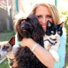 In-Person Holistic Medical Pet Consultation (Southern California)