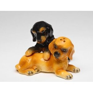 Black and Brown Cocker Spaniel Dog Puppy Salt and Pepper