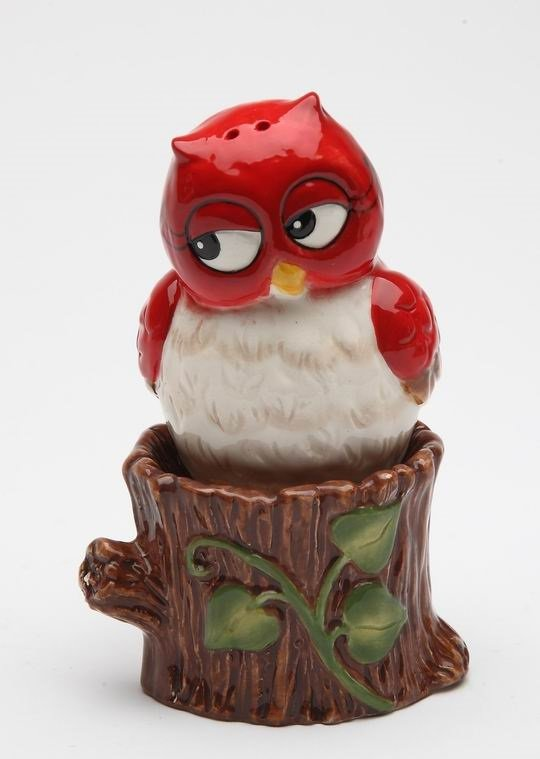 Whimsical Red Owl Sitting On Tree Branch Salt and Pepper