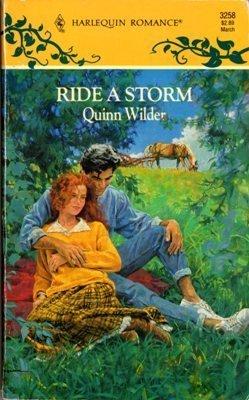 Ride a Storm by Quinn Wilder Harlequin Romance Book Novel 0373032587