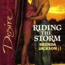 Riding The Storm by Brenda Jackson Silhouette Desire Romance Novel Book 0373766254