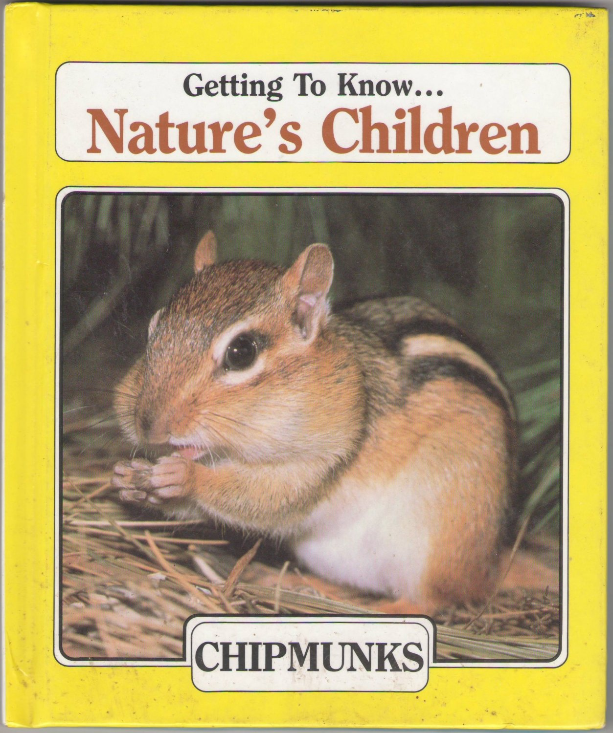 Getting To Know... Nature's Children Chipmunks Beaver SMC