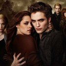 """Twilight The Cullens 8.5""""x11"""" *** FREE SHIPPING"""