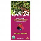 Chicza Organic Mayan Gum Mixed Berry Organic Chewing Gum
