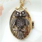 Steampunk Original Design Owl Locket Brass Necklace
