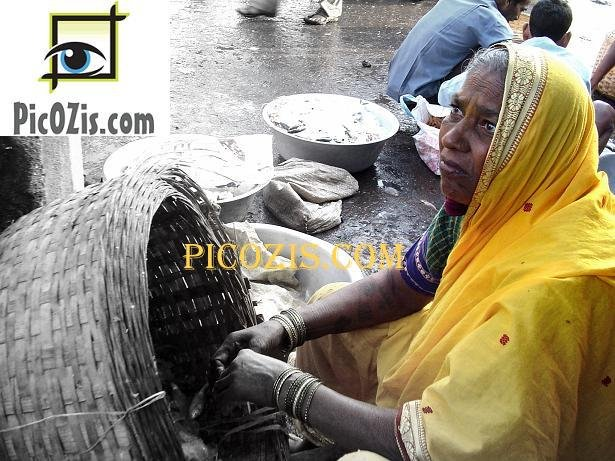 "VPE004201109 - Traditional woman in India - 20x30cm (8x12"")"