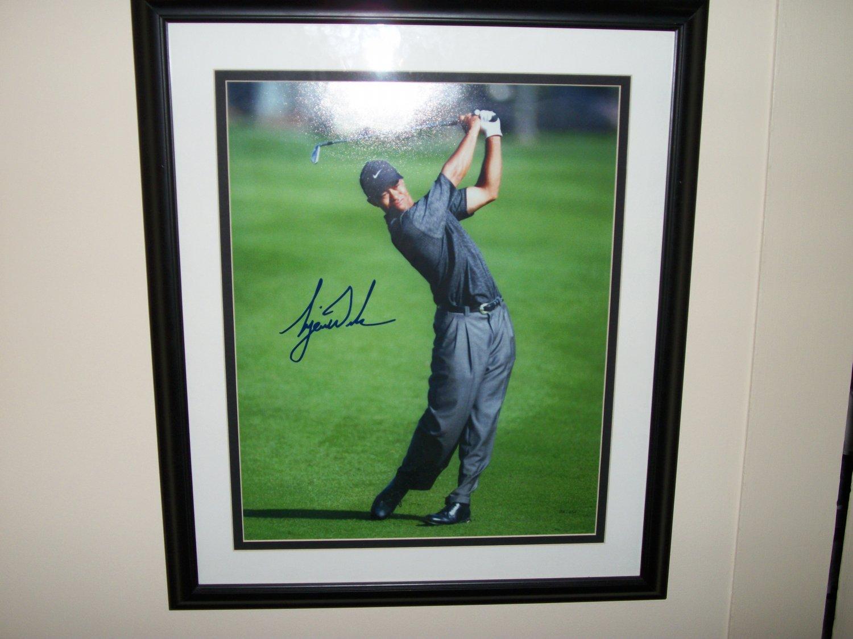 Tiger Woods LE autographed 16x20 FRAMED UDA Photo