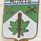 Insignia Ejercito Argentino Monte Argentine Army Jungle Team Badge #4