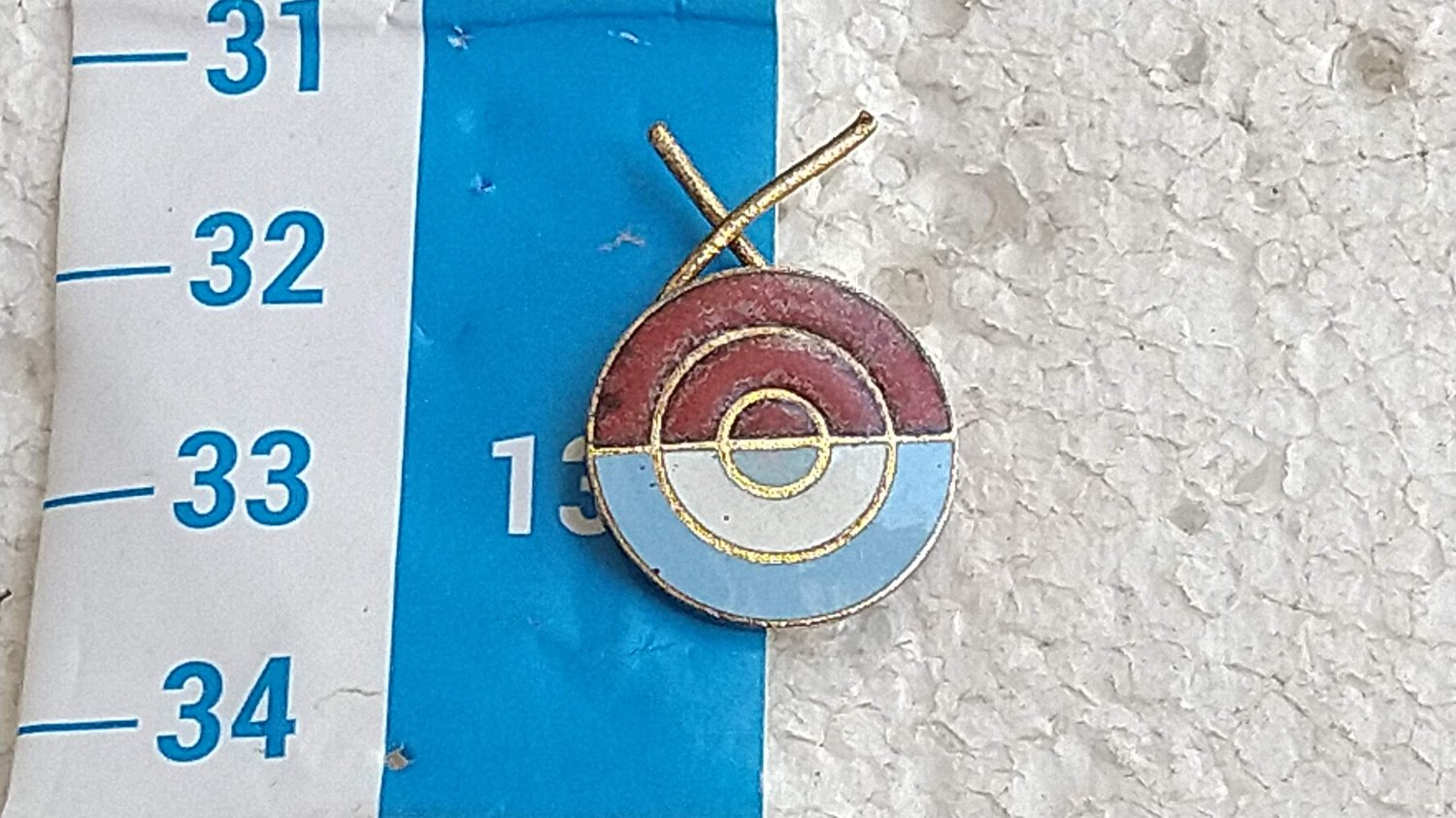 Argentina Argentine Army Shooting Instructor Coach Cockade Badge Pin #6