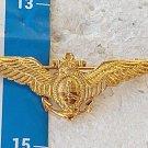 Argentina Argentine Navy Naval Aviation Badge Pin #8