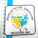 Argentina Argentine Boy Scout Scouts Necochea Badge Patch #8