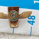 Argentina Argentine Air Force Pin Badge #9