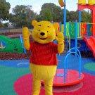 New high quality bear mascot costume adult size Halloween costume fancy dress free shipping