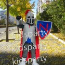 professional knight warrior mascot in shiny armor costume sale Fancy Dress Kits for Sports