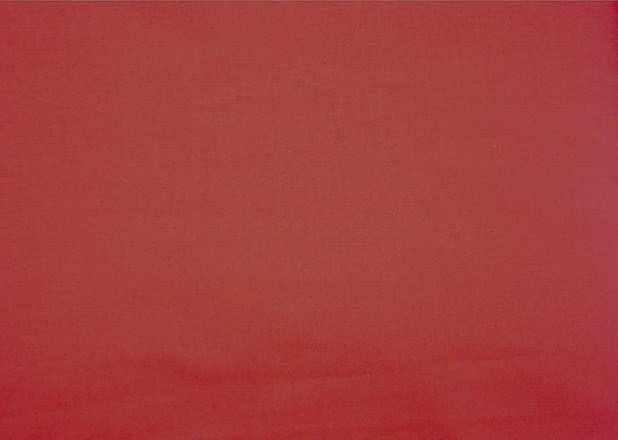 """Red Cotton  Fabric 2 1/2 yds x 44"""" wide"""