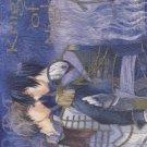 Knight of Night by CALADRIUS (Takada Banbi)