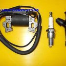 HONDA F310 F410 F400 F401 TILLER IGNITION COIL, SPARK PLUG & CAP